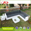 Sofà resistente UV della mobilia del giardino impostato (DH-8350)