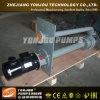 Pompa dei residui/pompa di fango con il motore elettrico