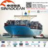 Frete de mar livre do transitário da taxa de Agnet China FCL LCL do transporte da logística do frete de mar melhor
