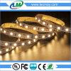 Luz de tira de epoxy impermeable estupenda de la cubierta SMD5050 60LEDs LED