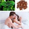 Male Sex Drug Yohimbine HCl CAS 65-19-0 para tratamento de impotência