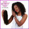 I prezzi 2016 di fabbrica comerciano i capelli all'ingrosso crespi dell'arricciatura del Virgin peruviano