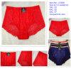 脂肪質の女性の女性のセクシーな下着のためのサイズの下着のパンティーとA1638中国
