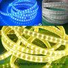 Tira em mudança de alta tensão 5050SMD RGB 120LEDs do diodo emissor de luz da cor