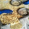 Entwässerter Knoblauch blättert mit Wurzel Eport nach Neuseeland ab