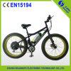 36V Motor 26  Fat Tire Electric Mountain Bike