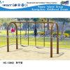 Оборудование скольжения спортивной площадки качания горячего сбывания напольное (HC-13802)