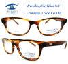 새로운 도착 고명한 상표 유리 광학적인 Eyewear (HM271)