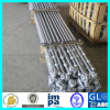 Container Forged Eye-Swivel Head Type Lashing Rigging Bar