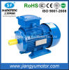 Motor elétrico trifásico Squirrel-Cage da indução fácil da instalação para a indústria da embalagem