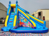 Diapositiva de agua inflable de la venta caliente del verano para la diversión, diapositiva de agua inflable con la piscina de agua (RB7041)