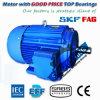 Электрический двигатель индукции компрессора высокой эффективности Ye3