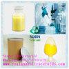Droghe antibiotiche CAS 126-07-8 della griseofulvina del rifornimento di qualità