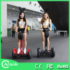 Highqualityの中国Factory Electric Scooter