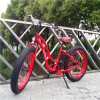 bicicleta elétrica do interruptor inversor de potência 500W verde para a senhora Rseb506