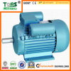 Ie2 Electrical Asynchronous WS Motor mit CER