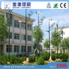 70W LED e 300W Wind Hybrid Solar Street Light (BDTYNSW2)