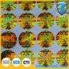 Fabbrica Price Hologram Stickers con il laser Printing di High Dpi