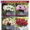 La seda artificial de Rose florece el regalo del negocio de la hoja de la cabeza de flor (w1058)