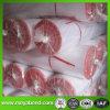반대로 Insect Net, Cheap Insect Netting, Greenhouse를 위한 Anti Insect Net