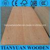 3.6m m Okoume Face/Back Furniture Plywood Board