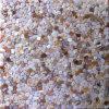 網の不規則な淡水の貝のモザイクはまだらになる(BFW-NB-IRR)