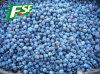 2014 neues Season IQF Blueberries Grade a