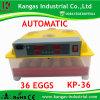 Incubateur automatique économiseur d'énergie d'oeufs de poulet à vendre 36