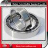 Cylindrical Roller Bearing (NU224E N224E NF224E NJ224E NUP224E)