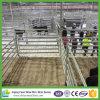 Panneau en acier portatif en bloc en gros de bétail