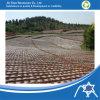 Landscape Cover를 위한 PP Non Woven Fabric