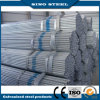 Disconto grande! ! ! Q195/Q235 Pre Galvanized Steel Pipe para Greenhouse