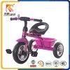2016 중국에서 간단한 3개의 바퀴 Trike 장난감 차