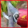 Koham 300W Power Grape Yard Electric Scissors
