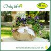Onlylife a personnalisé le planteur de fleur de tissu de planteur de tissu