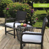 حديقة [ويكر] فناء [رتّن] كرسي تثبيت خارجيّ
