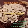 Semi di zucca della pelle di lustro del cinese