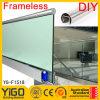 Dotación física del pasamano del vidrio Ballustrade/Glass Bannister/Glass