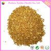 Masterbatches dorato per la resina del polipropilene