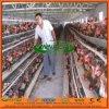Alta calidad Chicken Coop para Kenia/Nigeria Chicken Farm