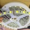 1개의 LED 2 색온도 이합체 LED 지구에 있는 Warmwhite Purewhite 혼합