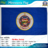 Национальный флаг США Минесоты (NF05F09089)