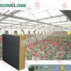 Garniture de refroidissement Noir-Enduite économiseuse d'énergie de Brown pour la plantation de serre chaude