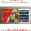 남아메리카 기준 100 전구 LED 끈 빛
