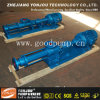 Waste Paper Slurry를 위한 직물 Dyes Viscous Slurry Transfer Single Screw Pump/Screw Pump