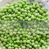 Ervilhas verdes congeladas IQF da alta qualidade