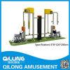 Equipo al aire libre de la aptitud del cuerpo de la alta calidad (QL14-239E)
