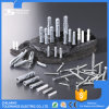 Plastic Expand Plug Plastic Nail in Anchor Plastic Expand Plug