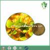 Hipertensão da cura do extrato da folha do Ginkgo das latona das flavonas 6% de 24%