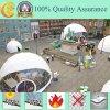 Chine fabricant Top qualité Big Dome Tente Chapiteau de mariage
